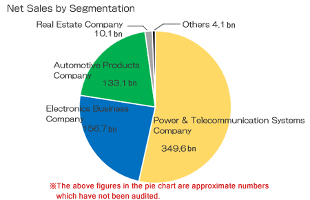 Net Sales by Segmentation