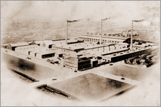 Completion of Fukagawa Plant (Jan.1923)